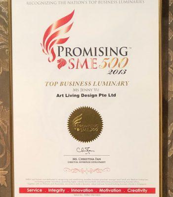 Promising SME500 2013